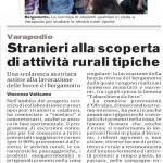 articoli giornali bergArte gazzetta del sud del 04/05/2014